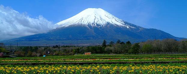 富士山銘柄